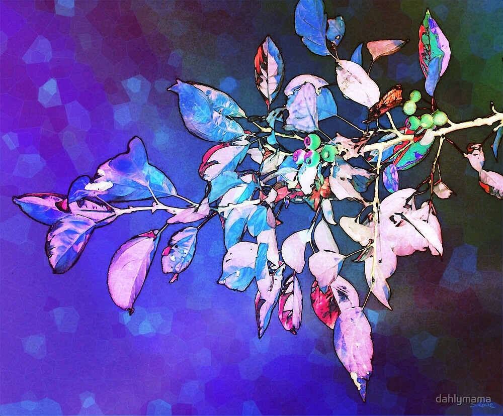 Violet Illumination by Shawna Rowe