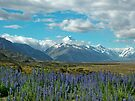 approaching mt cook by amko