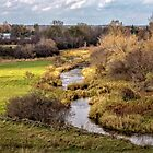 A meandering creek by PhotosByHealy