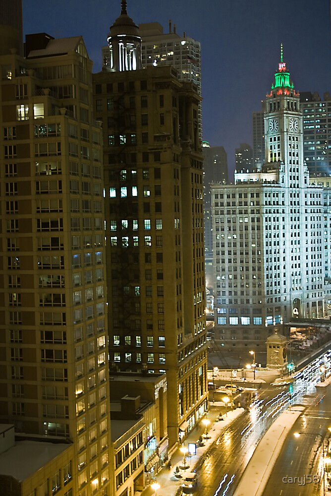 Chicago 2008 by caryj58