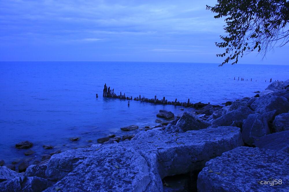 Lake  by caryj58