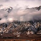 Majestic Mountain by Carol Barona