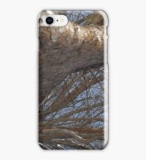 Blue Skies 006 iPhone Case/Skin