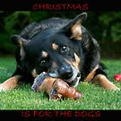 Christmas is for the Dogs by Leeo