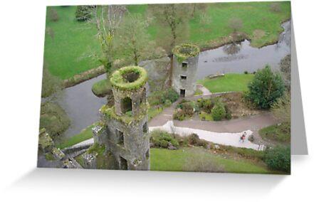 Blarney Castle Ireland by jaime92