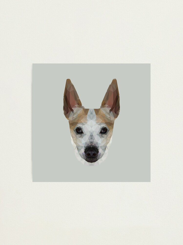 Alternate view of The Jack Russell - Finn Photographic Print