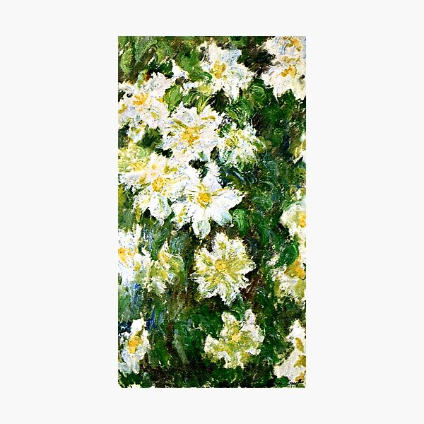 Monet - White Clematis, famous floral painting Photographic Print