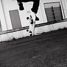 Hardly Flip by Leonine