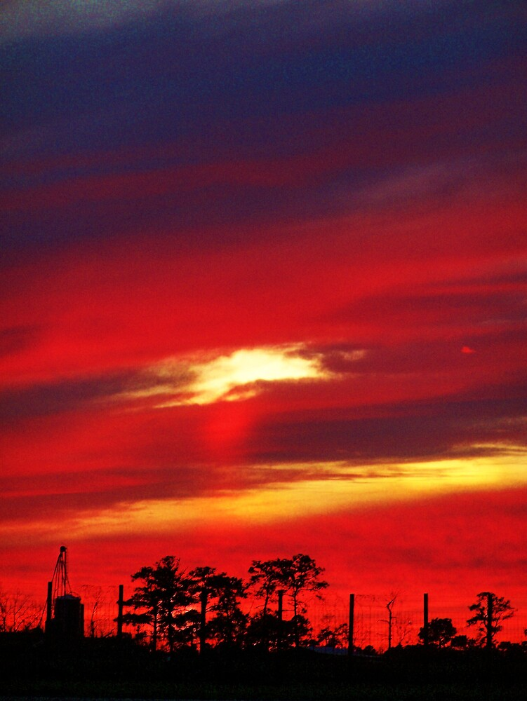 Country Sunset by Opal Westmoreland