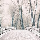 Winter Crossing by Jessica Jenney