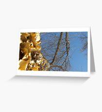Blue Skies 011 Greeting Card