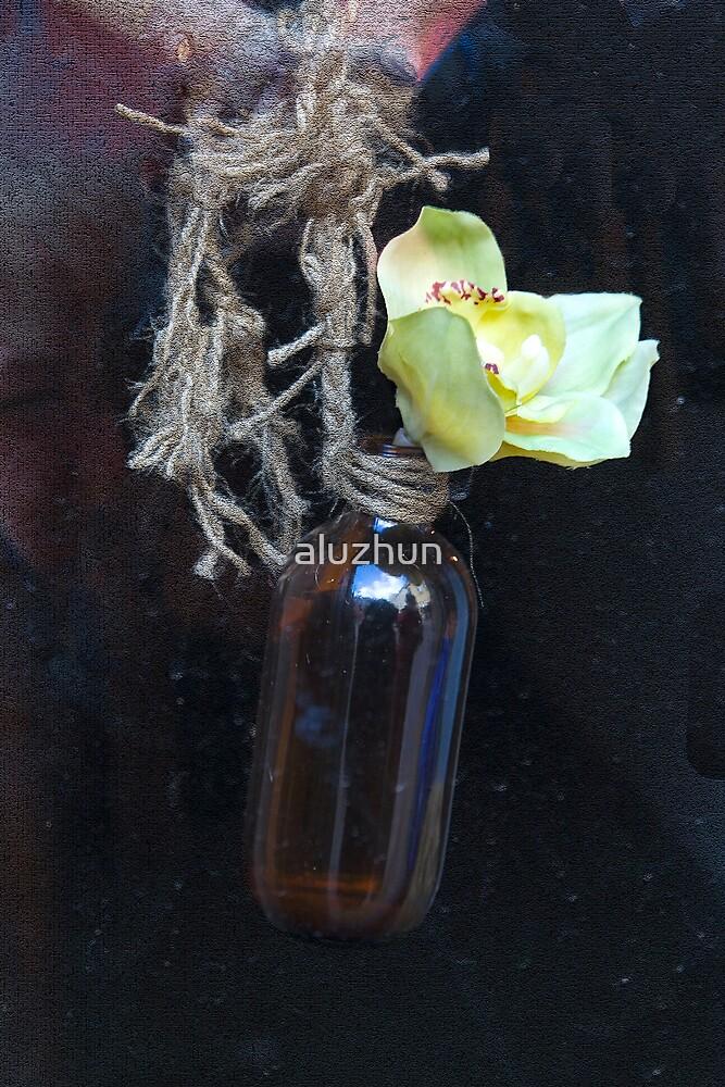 Orchid Arrangement by aluzhun