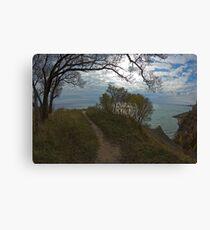 Moning at the Lake  Canvas Print