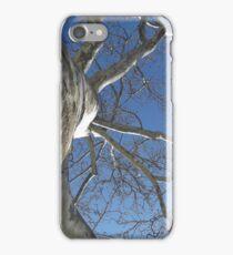 Blue Skies 019 iPhone Case/Skin