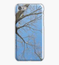 Blue Skies 023 iPhone Case/Skin