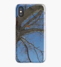Blue Skies 024 iPhone Case/Skin