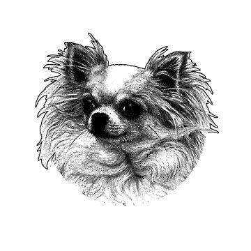 Chihuahua - Neighborhood watch by izikil