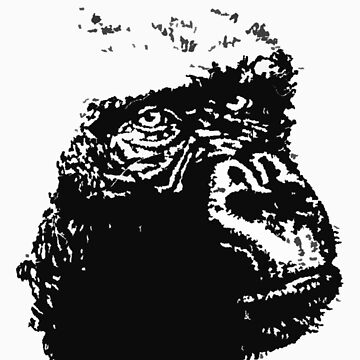 gorilla by AethersRancor