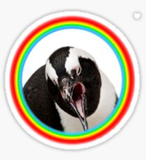 Penguin rainbow positive vibes gay happy meme wholesome funny cute Sticker