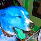 blue dog by Jessica Ferris