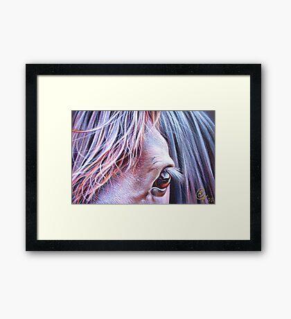 Glance Framed Print