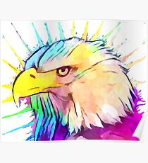 Bald Eagle 4 Poster