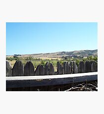 California Backyard Photographic Print