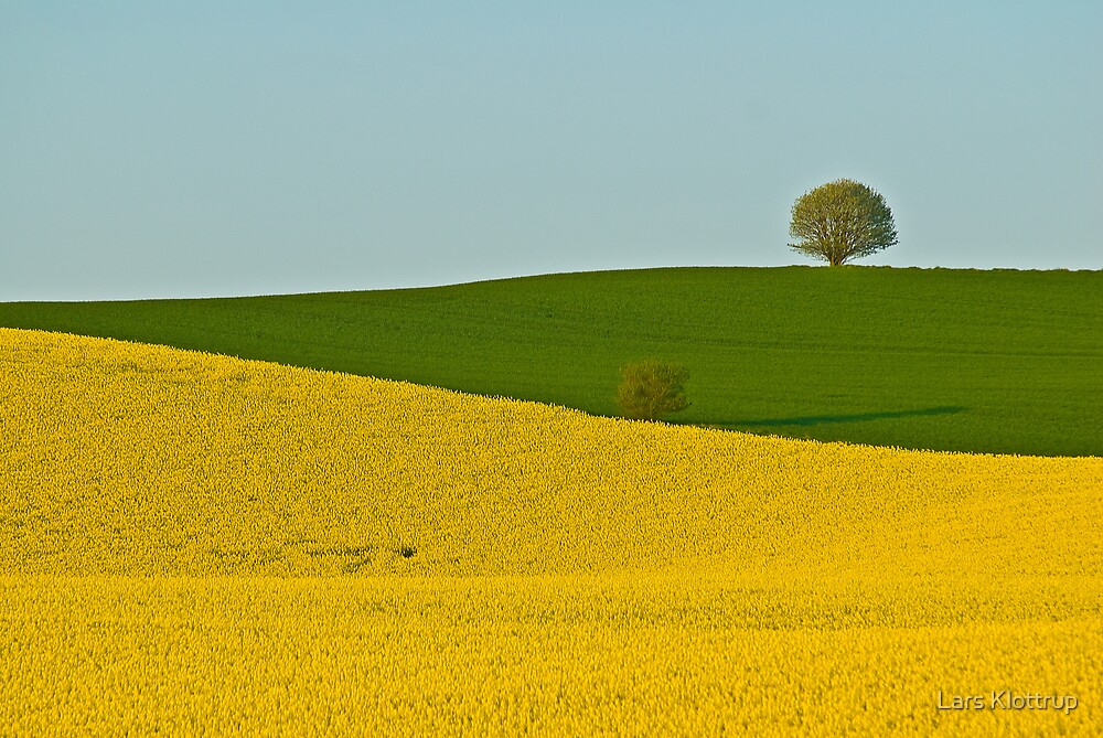 Cultivated Beauty by Lars Klottrup