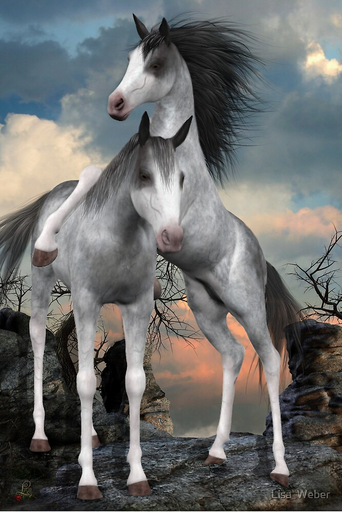 Young Mares Playing by Lisa  Weber