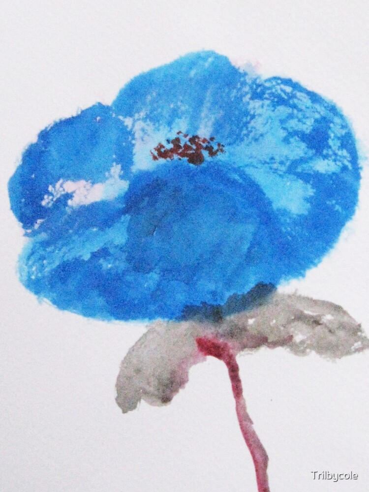 The blue Poppy by Trilbycole