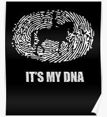 Horseback Riding DNA Poster