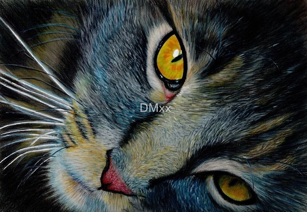 The Cat by DMxx