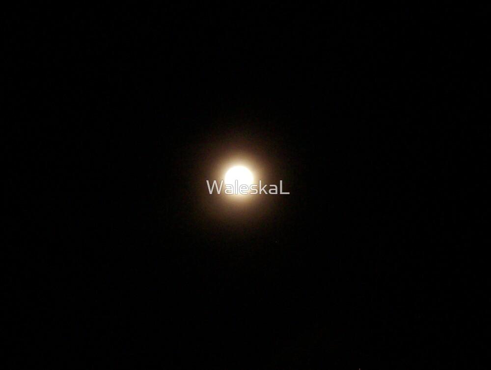 Moon Study by WaleskaL