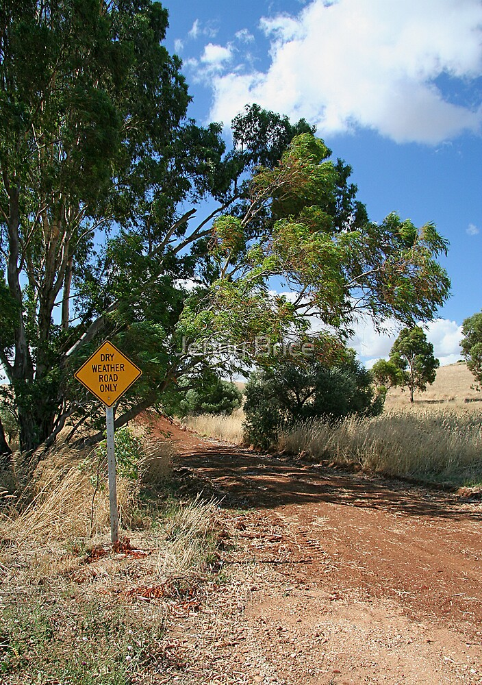 Dry Weather Road In Summer by Jenny Brice