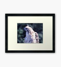 You Said WHAT?? Framed Print