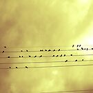 Music is Everywhere by James Gonzalez