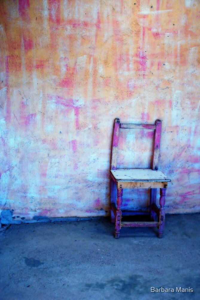 Solitude by Barbara Manis