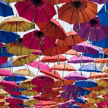 Umbrellas! by CarolynEaton