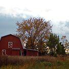 Th Red Barn by cherylc1