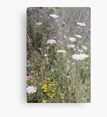 Mackinac Island Wildflowers Metal Print