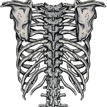 Back  Rib Cage by 0990dav