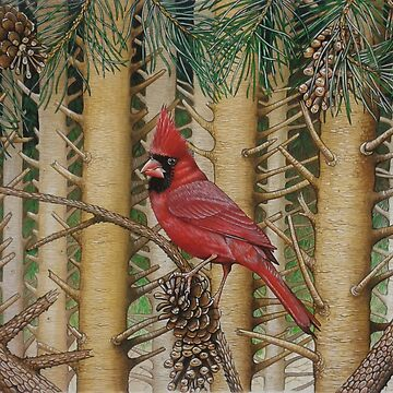 Red Cardinal in Pine forest by brooke1312