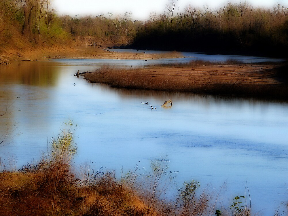 The Bend in the River by DottieDees