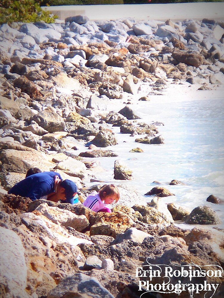 Shell Searchers by Erin Robinson