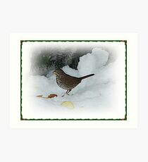 Bird Eating In The Snow Art Print