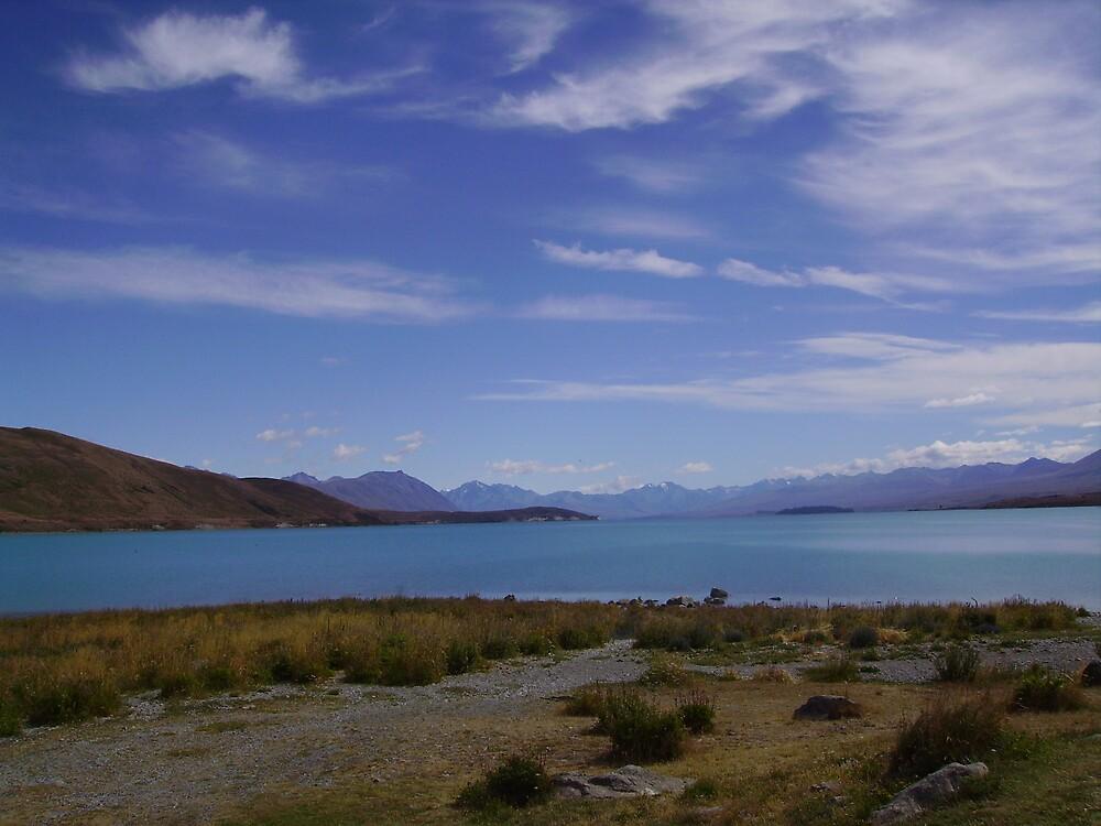Lake Tekopa, New Zealand by Phil413Jay