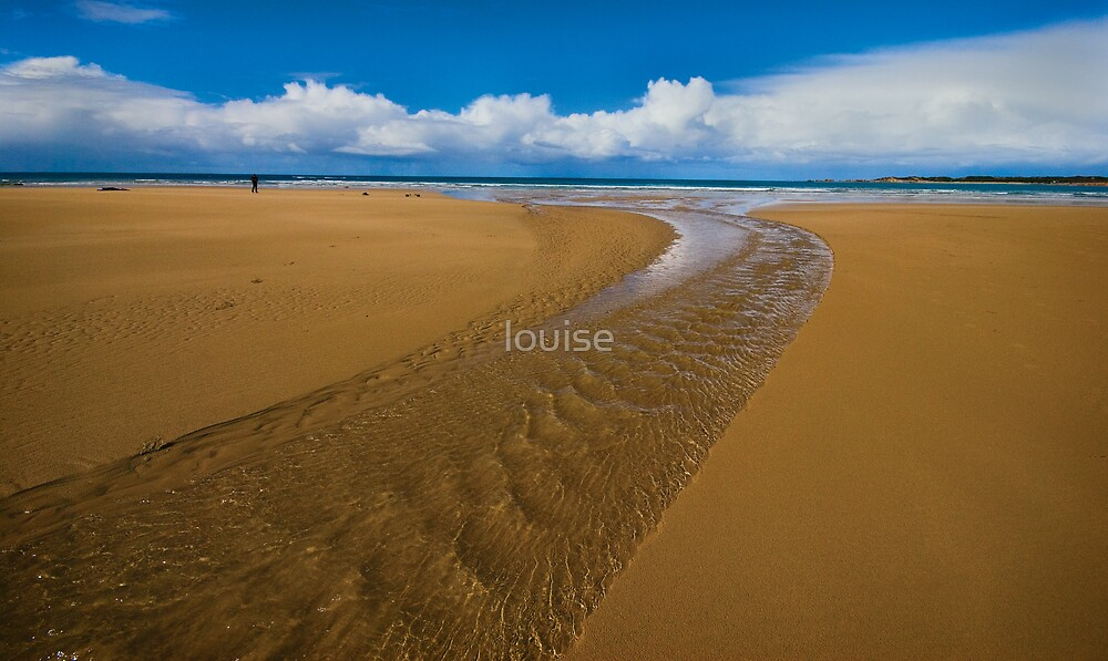 Mouth of Anglesea river by louise