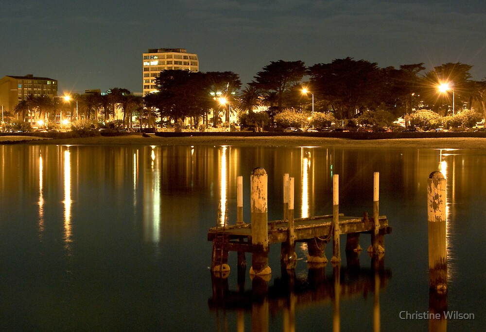 St Kilda Foreshore ,Melbourne  by Christine Wilson