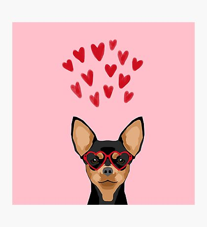 Chihuahua black and tan valentines day love hearts dog breed gifts cute chiwawa glasses Photographic Print