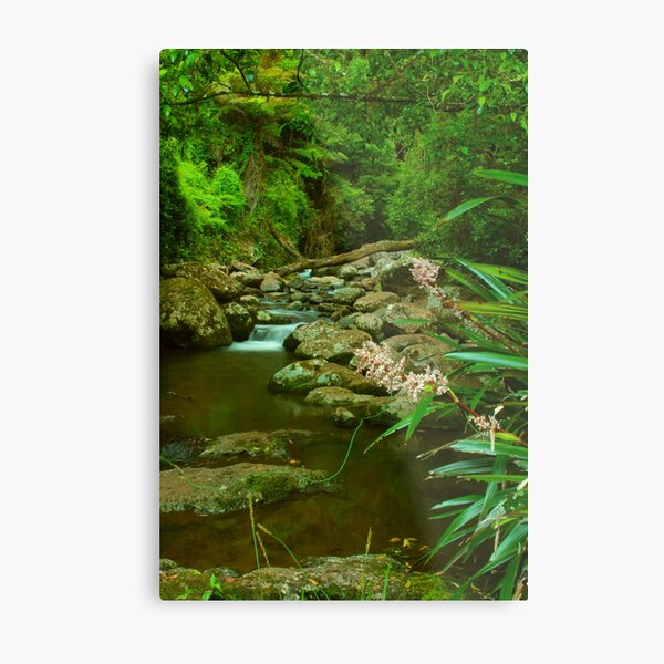 Food for the soul at Picnic Rock Metal Print